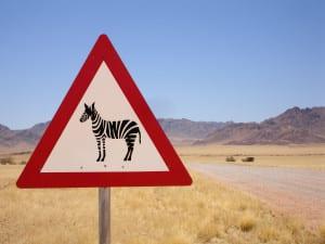 Namibia-Rundreisen mit deutschsprachiger Reiseleitung