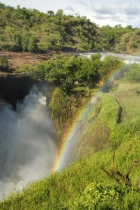 Murchison Falls - Uganda Reise
