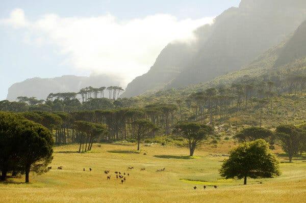 Südafrika Umdoni