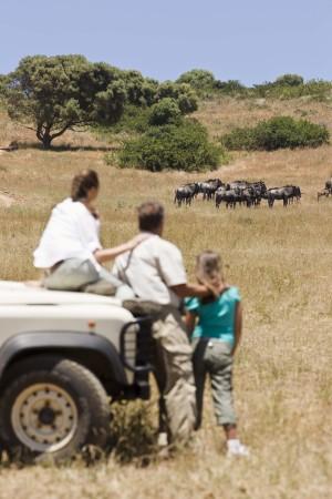 Individualreisen Südafrika - Selbstfahrer