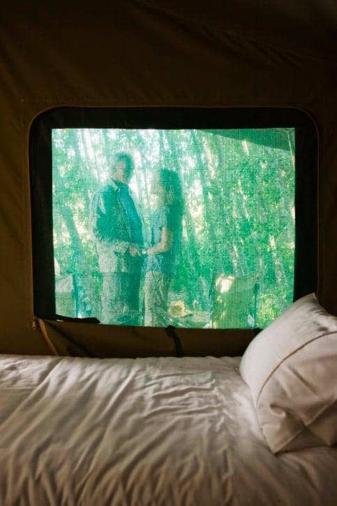 1 Tag auf Safari in Afrika
