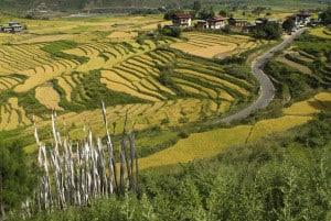 Bhutan Rundreisen - Panorama
