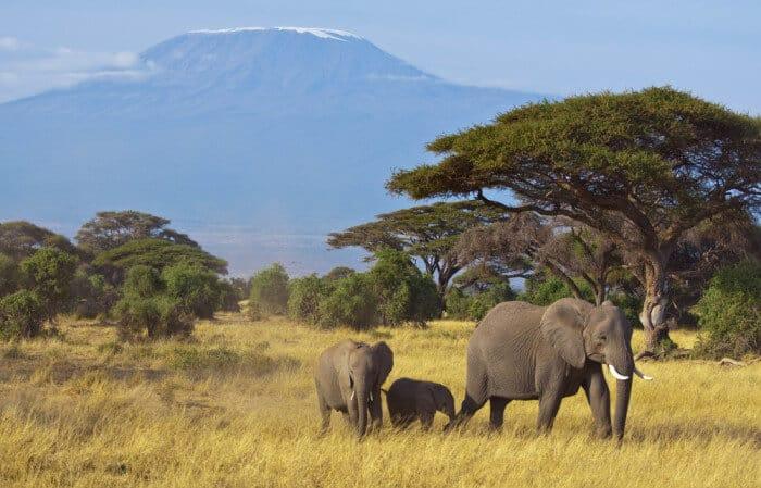 Afrika Naturreisen