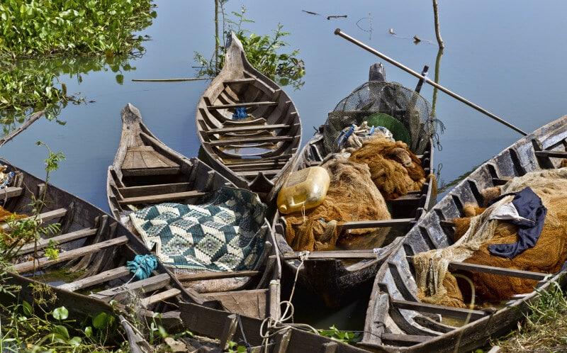 Kambodscha - Delfine, Vogelscharen und Bergwald