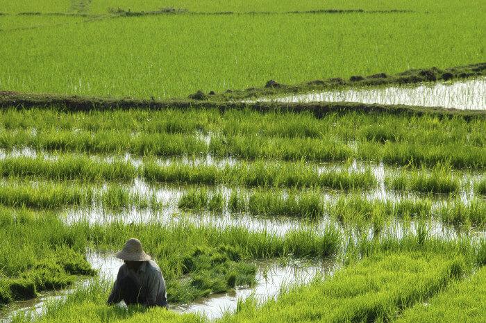 Der Süden Myanmars