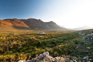 Cederberge - Südafrika
