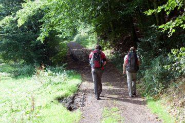 Reisebericht Eifel – Geopark Vulkaneifel - Wandern in Deutschland