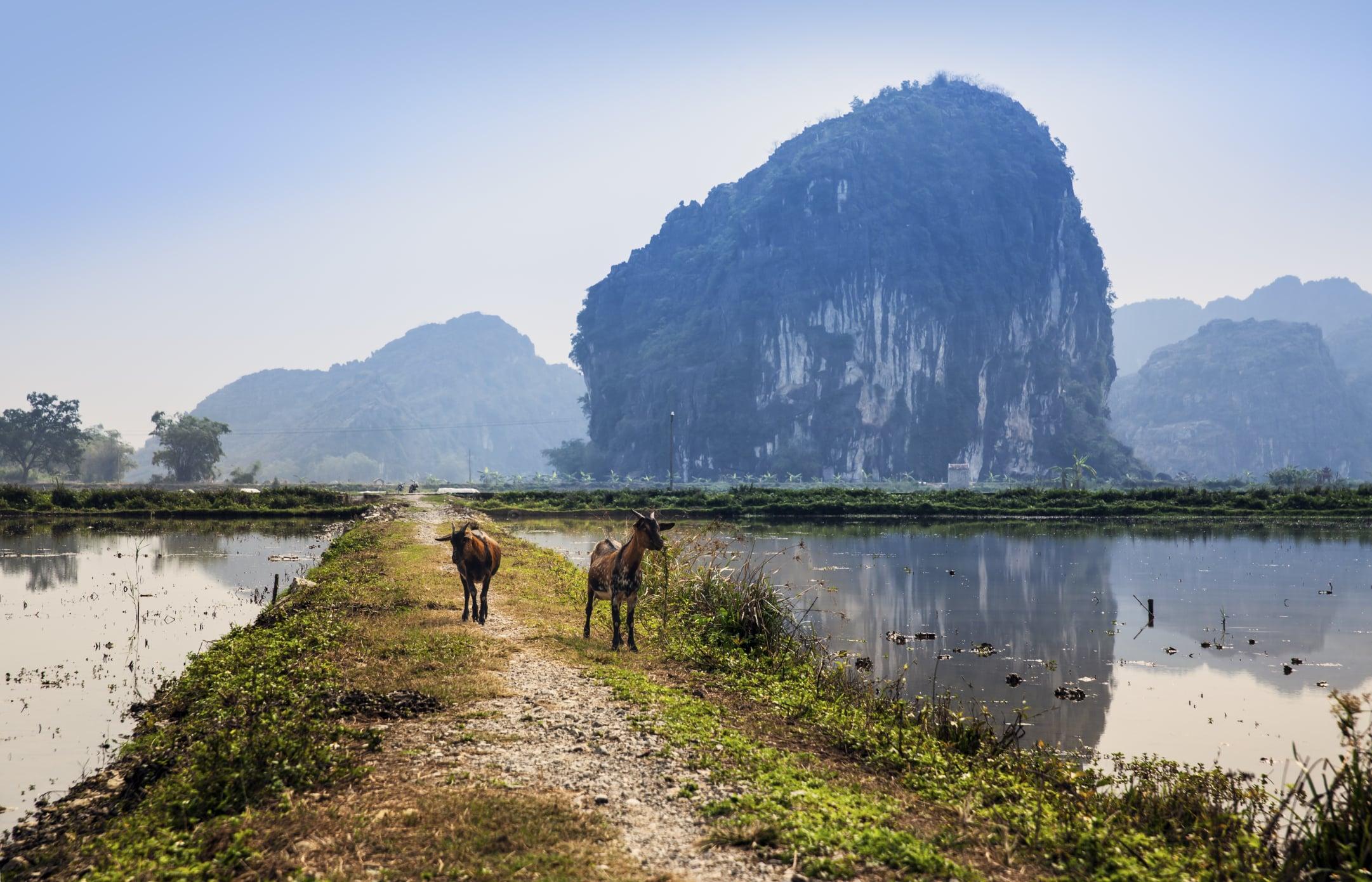 Mekongdelta - Vietnam Erfahrungsbericht