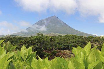 Reisebericht Azoren - Unsere erste Reise auf die Azoren – Ein 14-tägiger Traum