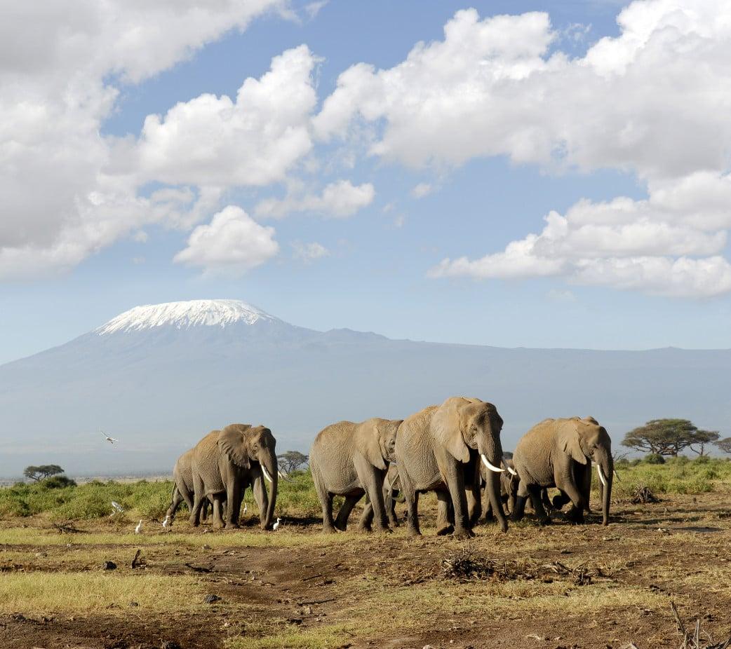Exklusive Tansania-Reisen