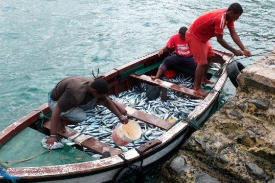 Fischerei Essen