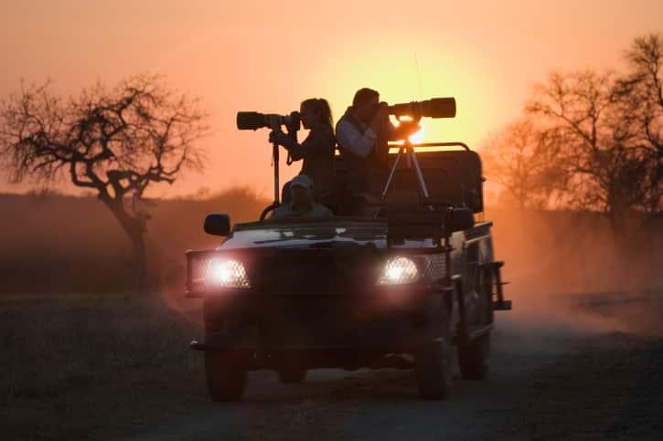 Limpopo-Wildtierbeobachtung mit natuerlich-reisen.net