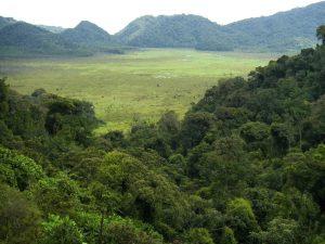 Ruanda - Reisen - Sabyinyo Silverback Lodge