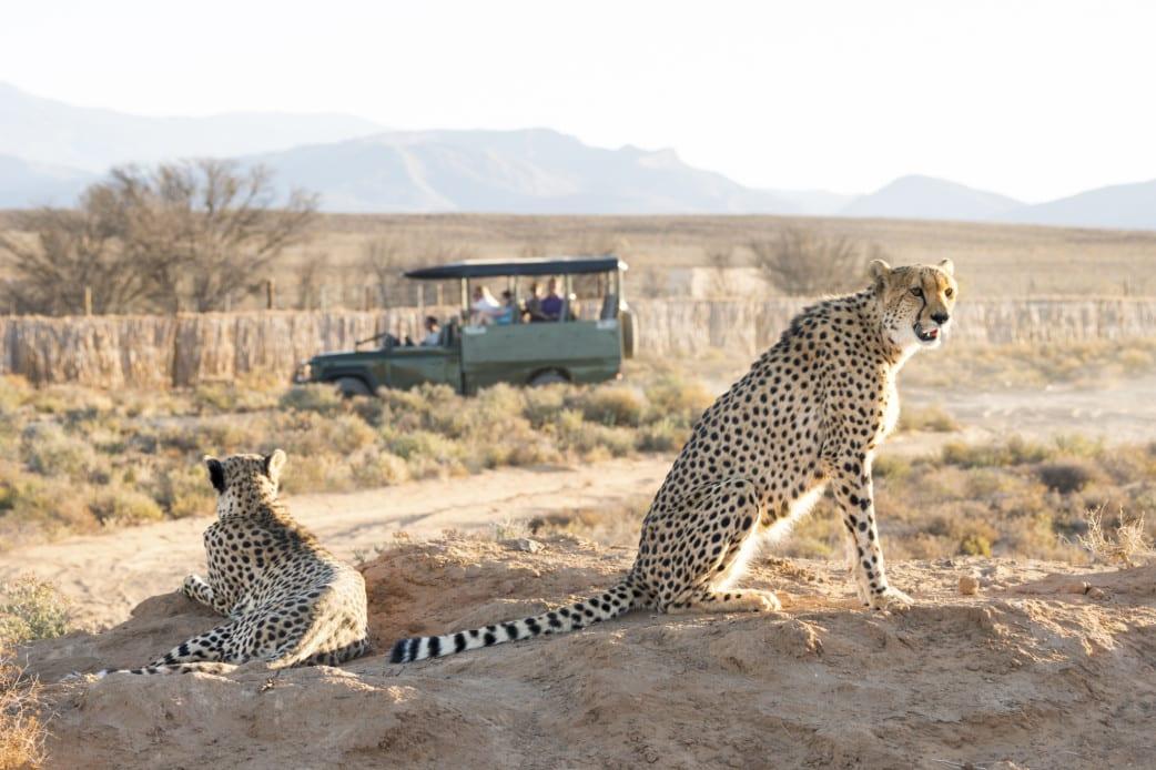 Südafrika - Reisen - Tourismus