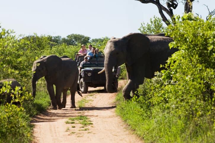 Südafrika - Reisen - Nationalparkwoche