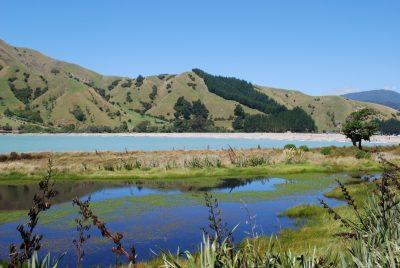 Nelson - Suedinsel - Neuseeland