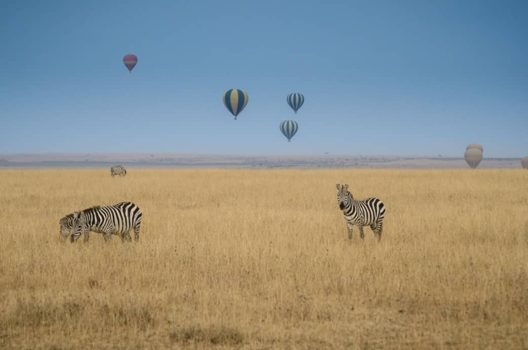 ballonfahrt serengeti ballonflug tansania hei luftballon rundreisen gruppenreisen und. Black Bedroom Furniture Sets. Home Design Ideas
