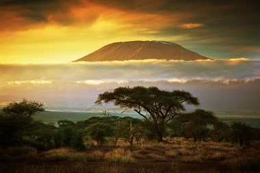 Killimanjaro Panorama Kenia