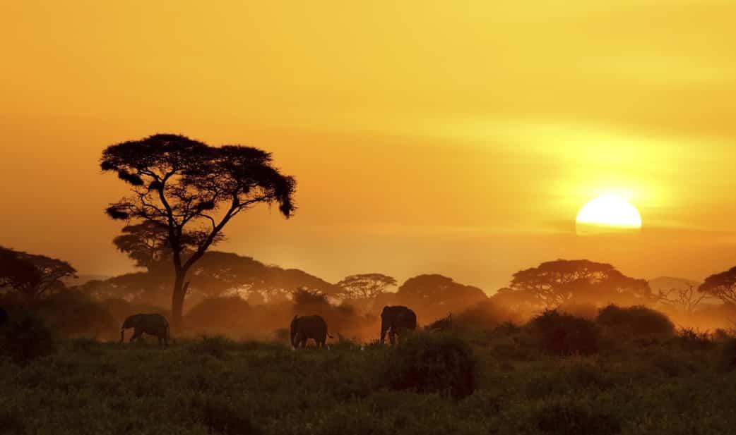 Kenia Rundreise buchen