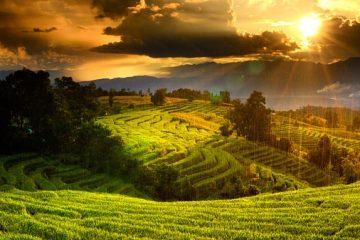 Reisebericht Vietnam und Laos