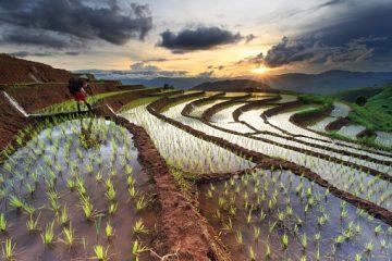 Individual- und Gruppenreisen durch kambodscha