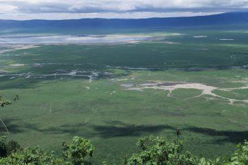 Familiensafari nach tansania in die landschaft