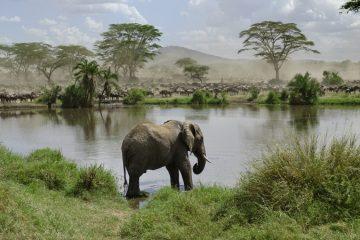 tansania märz april