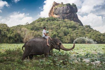 Familienurlaub Sri Lanka