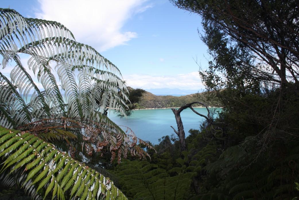 Abel Tasman Track Neuseeland