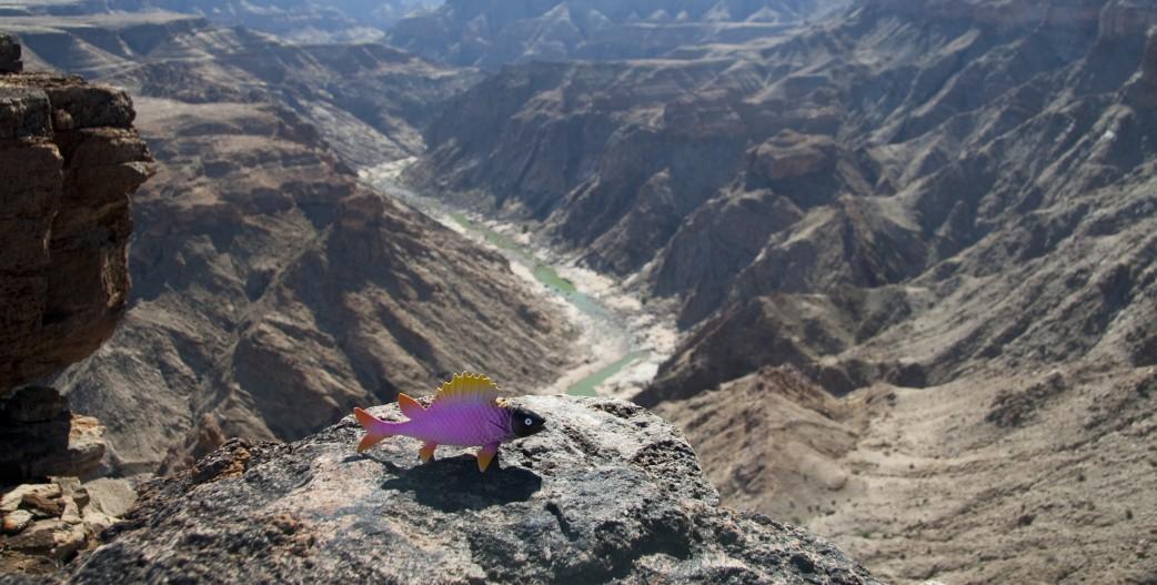 Namibia Reisen - Fish River Canyon
