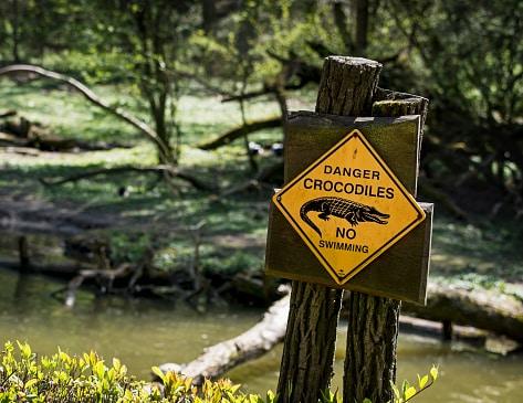 Warnhinweis Krokodile