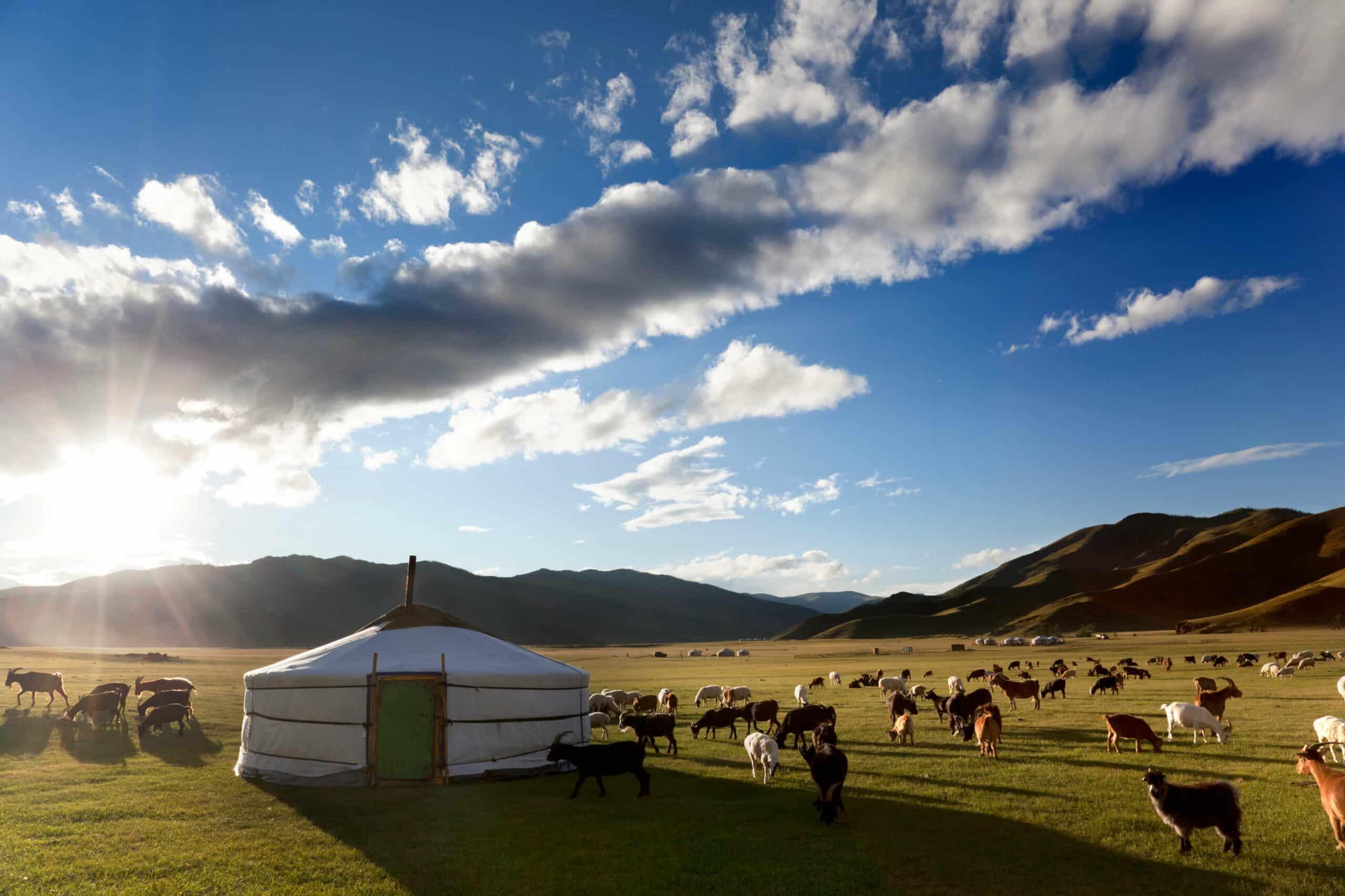 Mongolei Jurtencamp Rundreisen