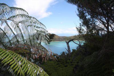 Abel Tasman Track - Nelson - Neuseeland