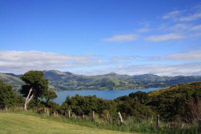 Akaroa Peninsula - Suedinsel - Neuseeland
