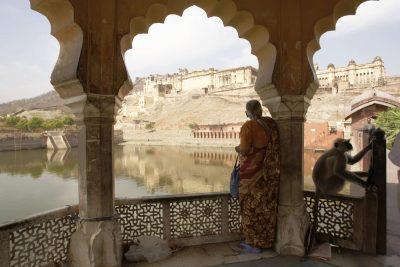 Amber Fort - Rajasthan - Indien