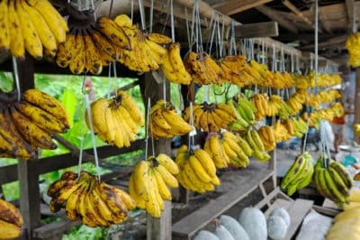 Borneo Rundreise -Borneo Individuell -Gruppenreise Borneo - Bananen Stand - Kuching - Malaysia