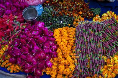 Indien Aktivreise -Indien Rundreise - Indien Gruppenreise -Basar - Indien - Reise