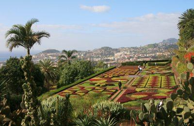 Botanischer Garten - Funchal - Madeira - Portugal