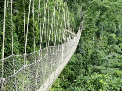 Burkina Faso Gruppenreise -Canopy Walk - Kakum National Park - Ghana