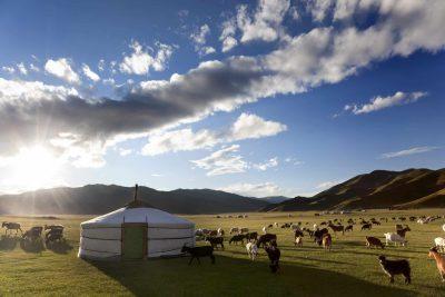 Mongolei Erlebnisreise -Mongolei Rundreise -Mongolei Gruppenrise -Ger und Weide - Mongolei