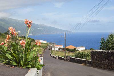 Insel Pico - Azoren - Portugal