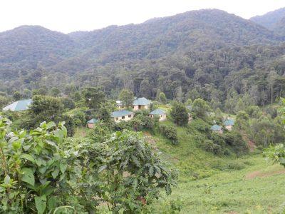 Rundreise Uganda - Land der tausend Huegel - Fahrt nach Ruanda - Uganda