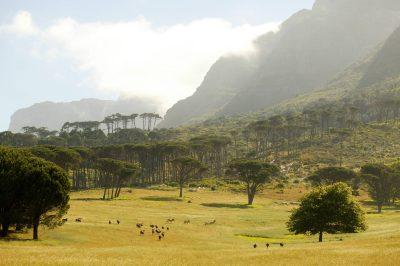 Suedafrika Gruppenreise -Landschaft - Bonamanzi Game Reserve - Suedafrika