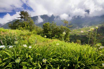 Landschaft - Madeira - Portugal