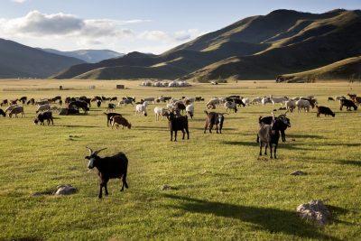 Mongolei Erlebnisreise -Gruppenreise Mongolei -Landschaft - Orkhon Tal - Mongolei