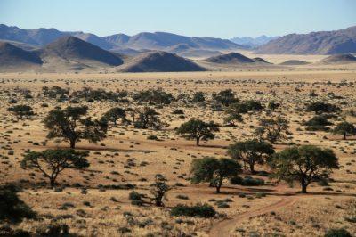 Landschaft - Otavi Berge - Namibia