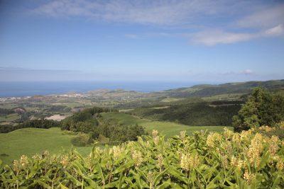 Landschaft - Sao Miguel - Azoren - Portugal