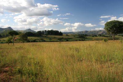 Landschaft - Swasiland - Südafrika