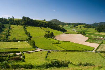 Landwirtschaft - Azoren - Portugal