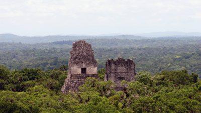 Maya Pyramide - Tikal - Guatemala